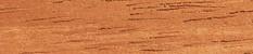 mengkulang wood specie