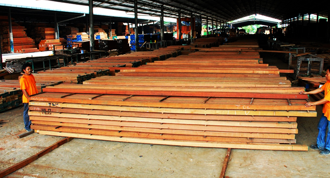 filtra timber trading - rough lumber supplies