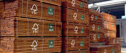 stocks in vietnam | timber philippines