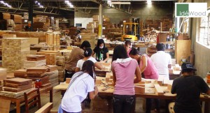 idewood | filtra timber trading
