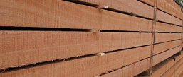 imported wood products | merchants and home depots
