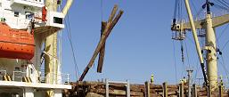 sawmills plywood mills log supply