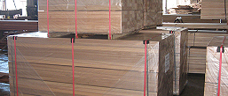 logs, sawn or machined | timber producers and exporters