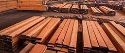 stocks at filtra timber trading
